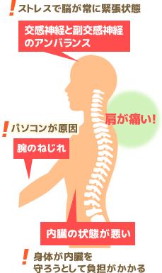肩の痛み首の痛みの原因